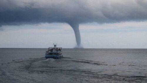 شاهقة وقعت قبل أيام في سواحل جازان.